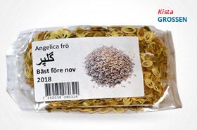 Angelica frö- گلپر